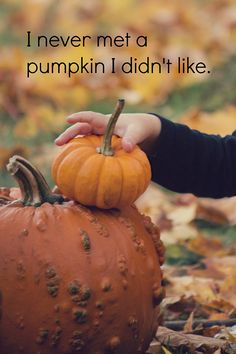 O Pumpkin, Pumpkin, wherefore art thou Pumpkin?